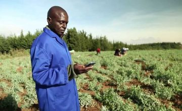 Kenya: Mobile Market Access